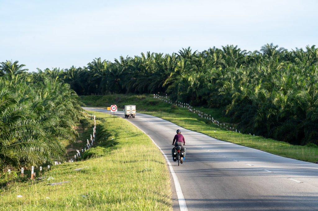 Johanna on Malaysia Federal Route 5 in Tanah Merah palm oil fields