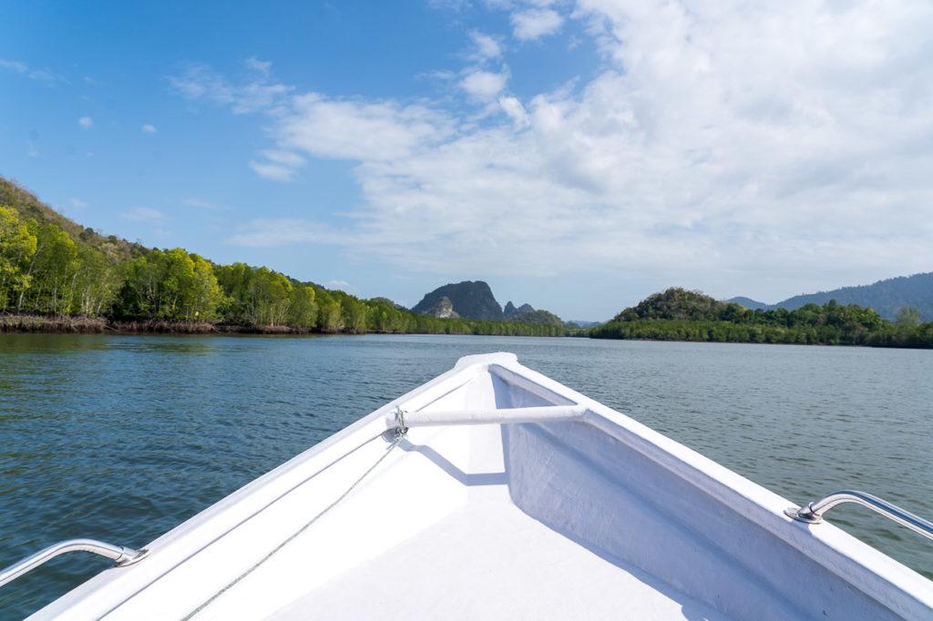 Mangrove cruise, Kilim Geoforest Park, Langkawi