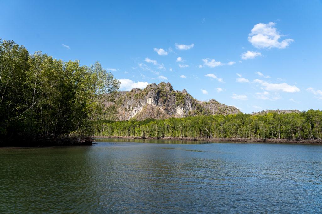 Mangroves, Kilim Geoforest Park, Langkawi