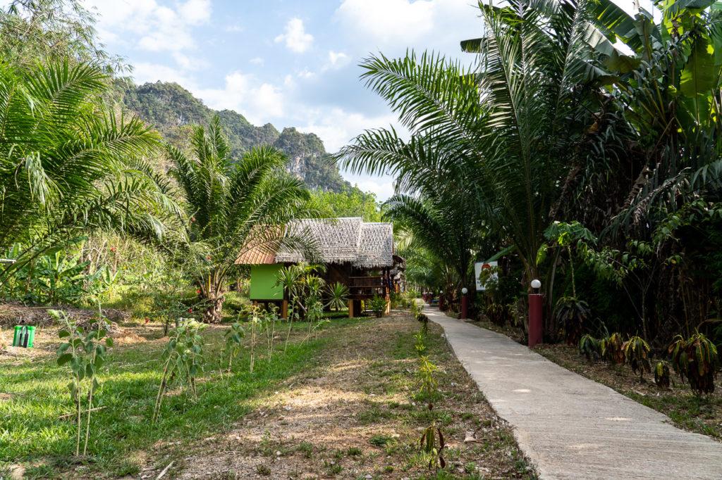 Khao Sok Bamboo Huts Resort
