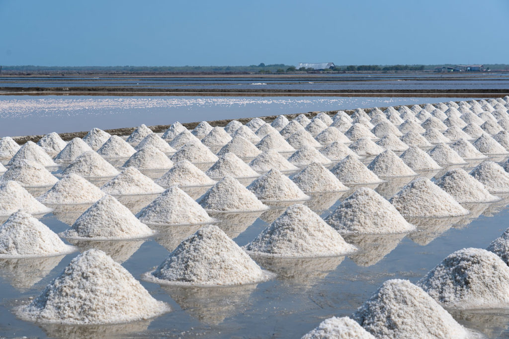 Salt pan in Laem Phak Bia