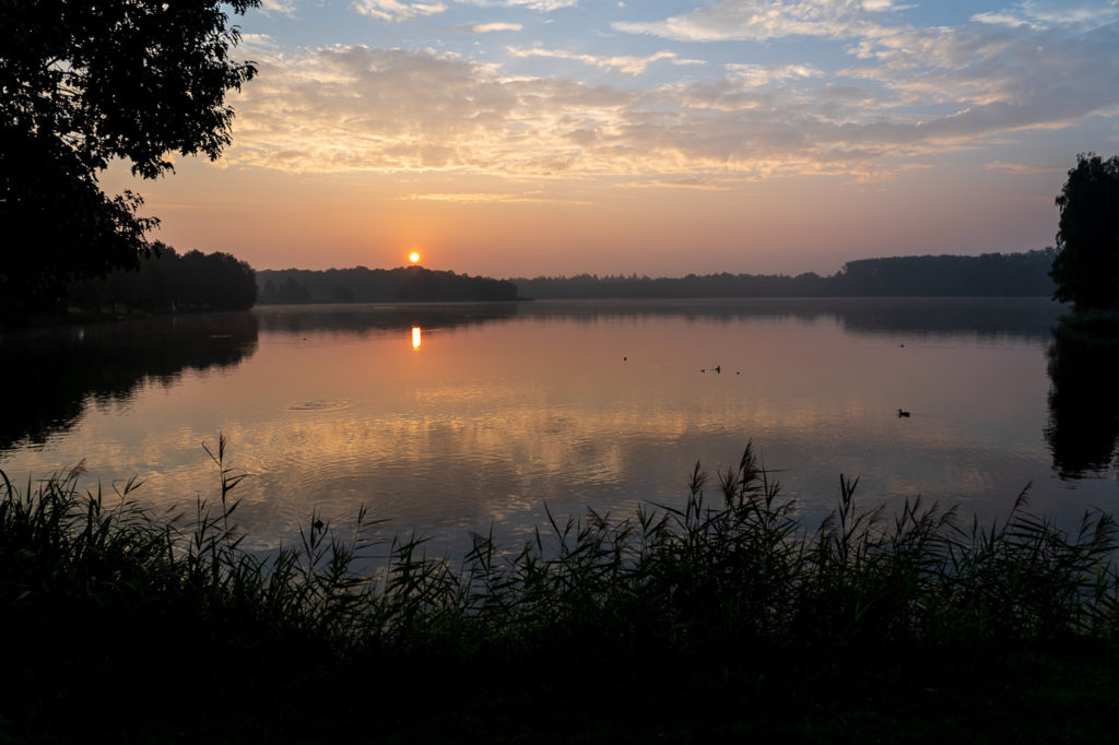 Sunrise over Kronensee, Ostercappeln
