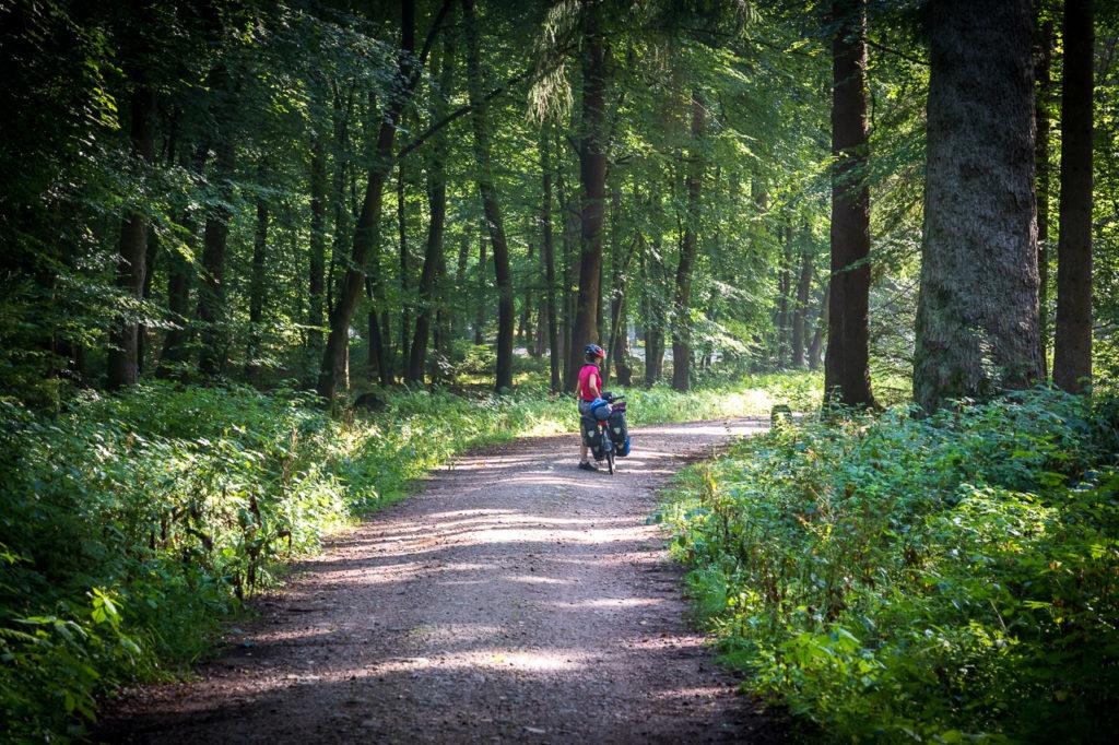 Johanna at Buchenwälder im Rosengarten