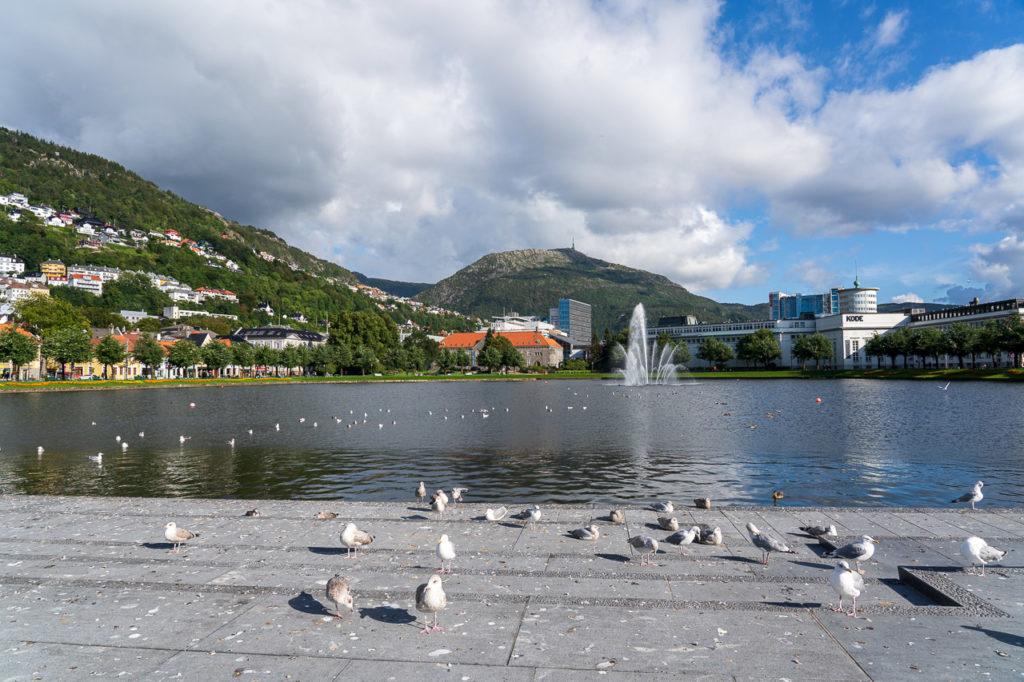 Lille Lungegårdsvannet, Bergen